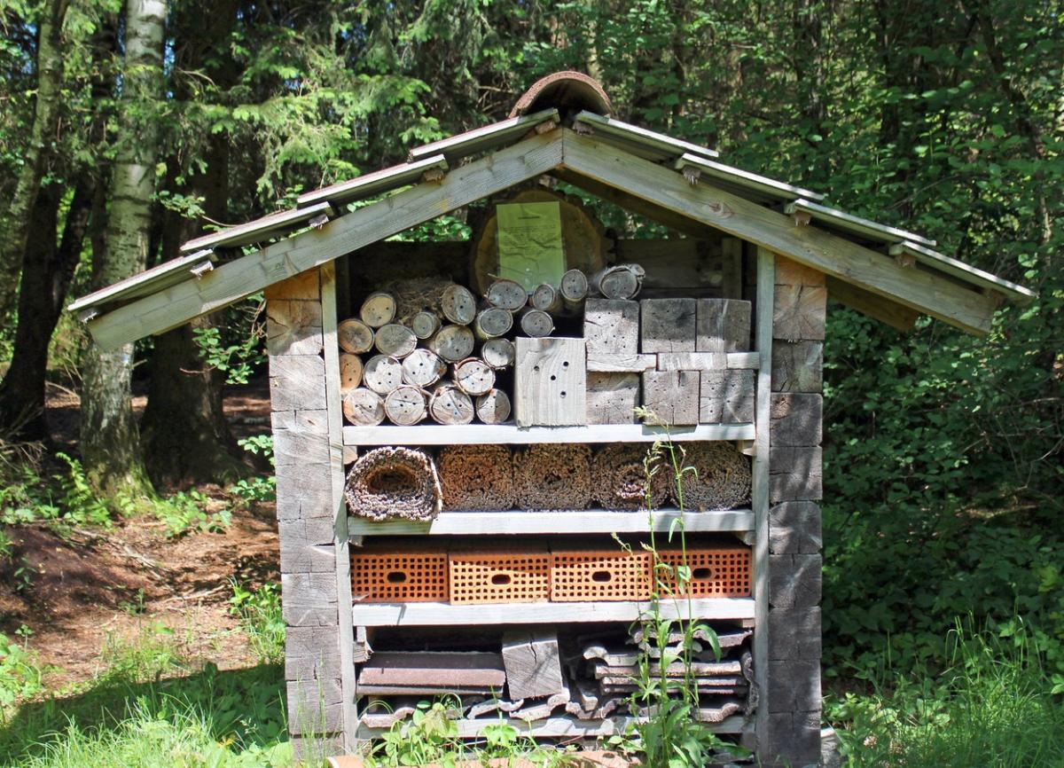 El hotel de insectos atraerá a la fauna beneficiosa