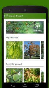 Iknowtrees es una app para identificar plantas