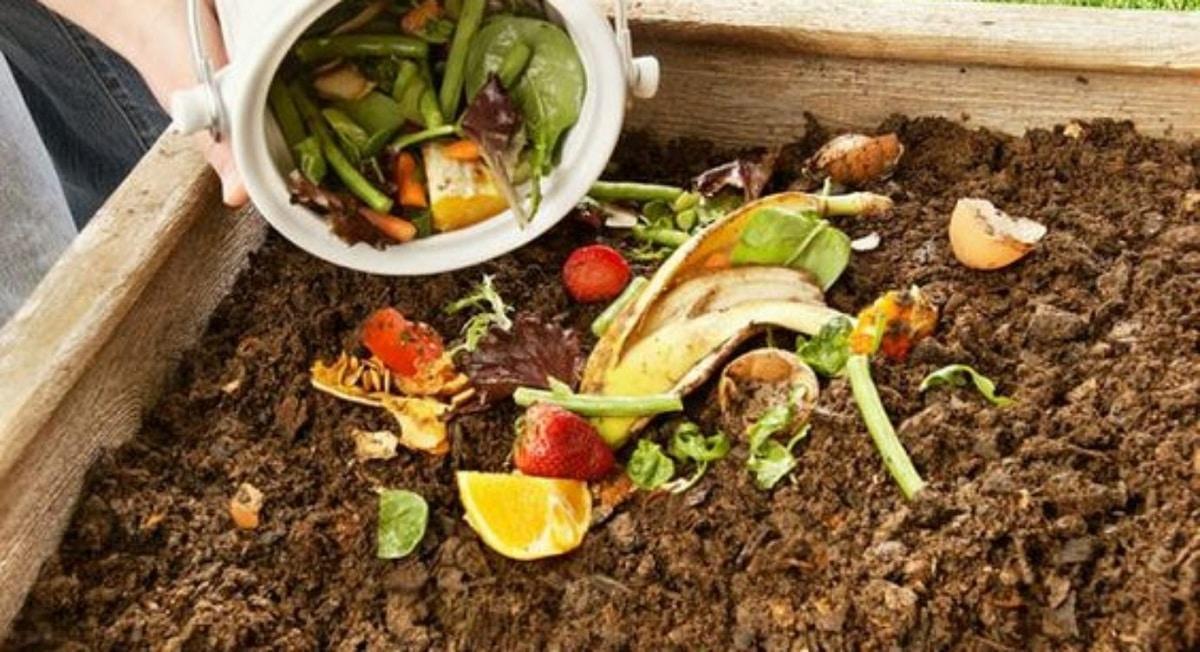 ingredientes del compost