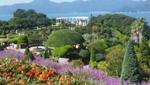 Escoge plantas adecuadas para tu jardín cerca del mar