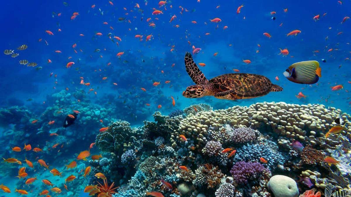 lugares acuaticos