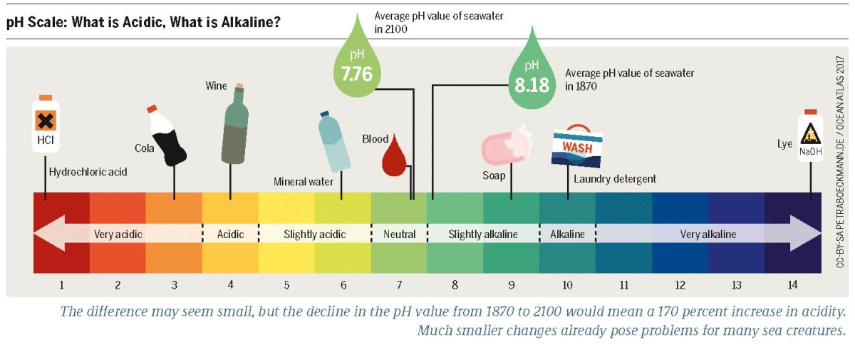 La escala del pH se divide en ácidos y alcalinos