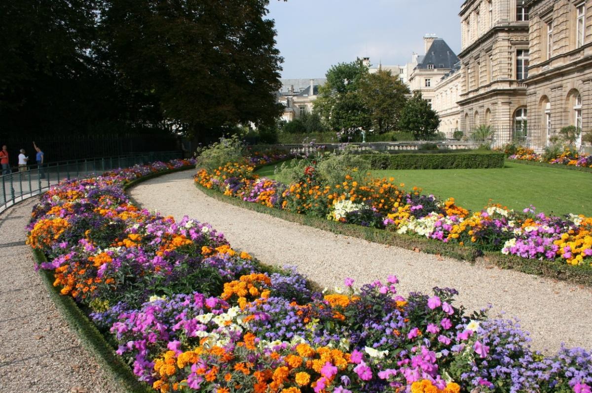 Las flores de los Jardines de Luxemburgo embellecen los caminos