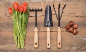 Las herramientas de jardín se pueden comprar online