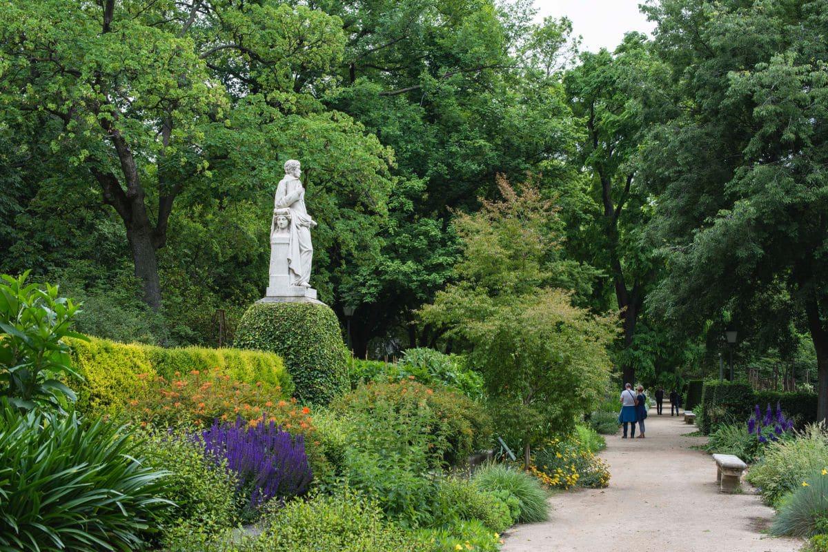 jardin botanico de Atocha
