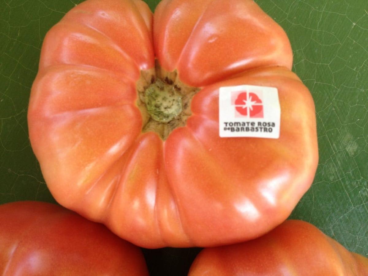 tomate gigante