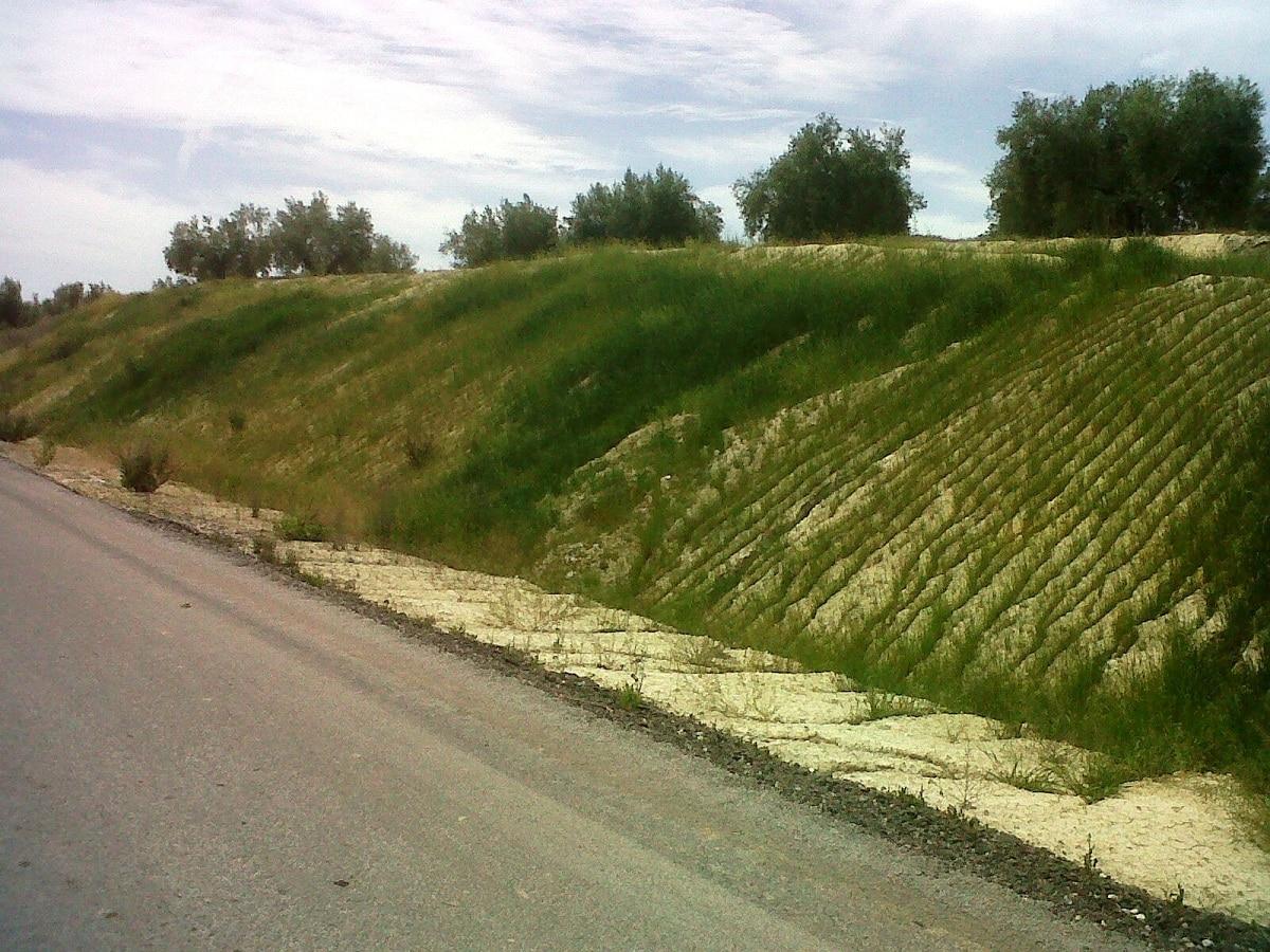 zonas verdes en taludes