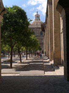 Los naranjos crecen bien en Sevilla