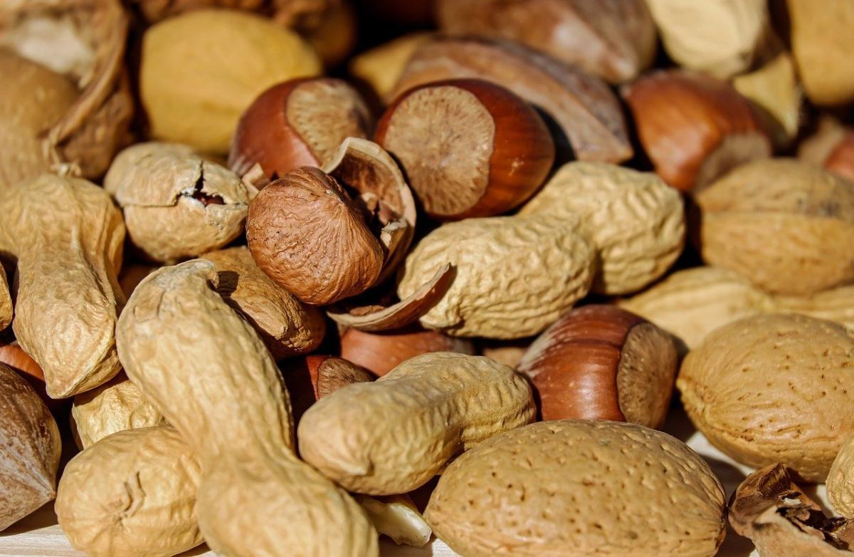 Hay muchos tipos de frutos, y uno de ellos son los secos
