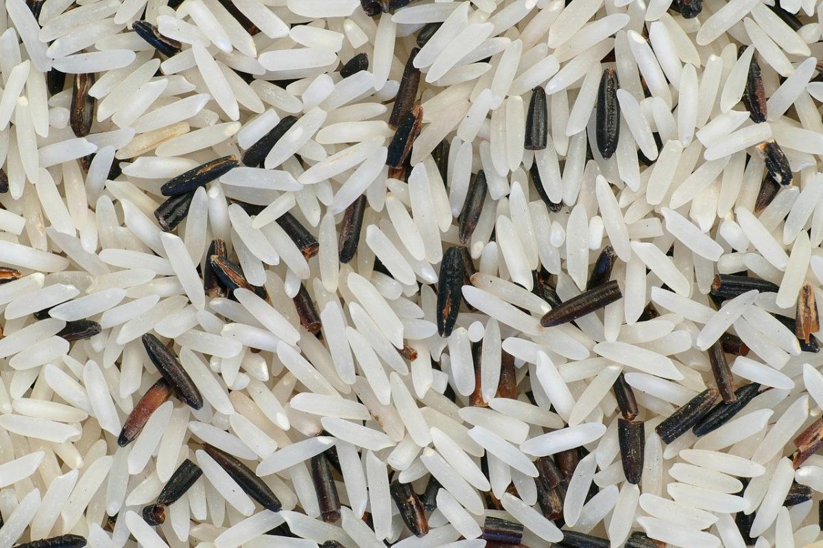 El arroz es un cereal muy importante