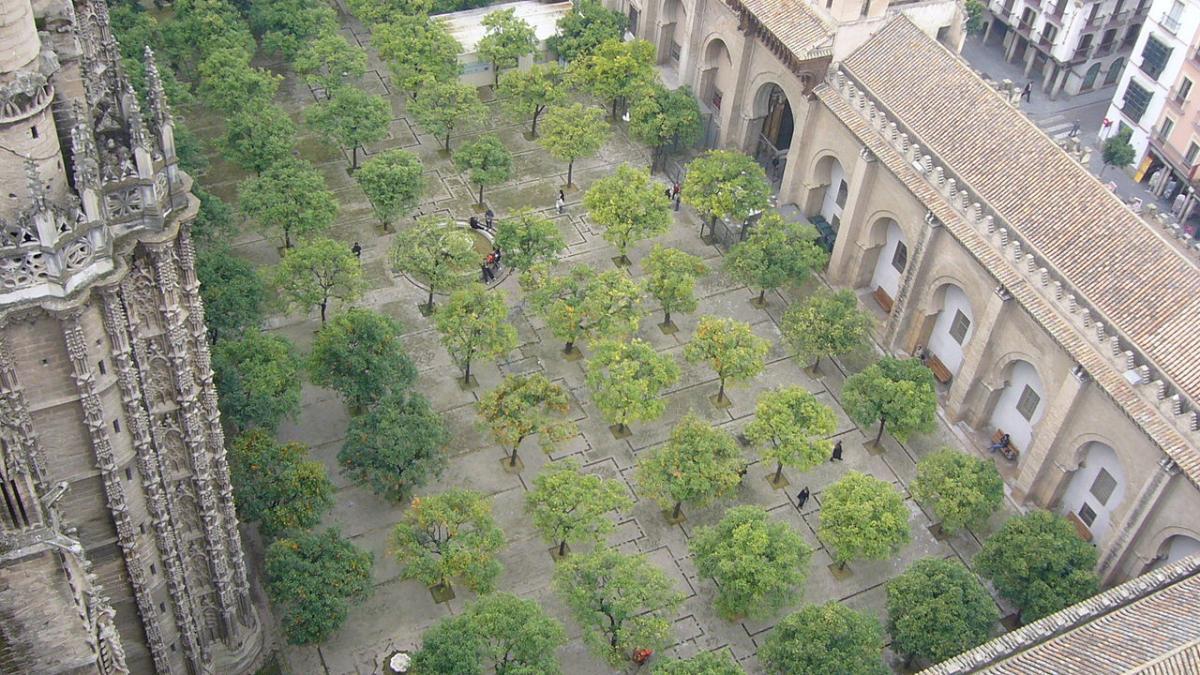 El Patio de los Naranjos de Sevilla es pequeño