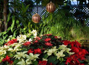 Puedes decorar tu jardín con elementos navideños