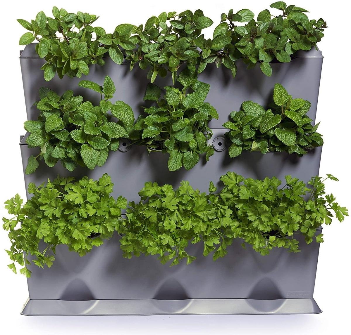 El huerto vertical es ideal para cultivar plantas pequeñas