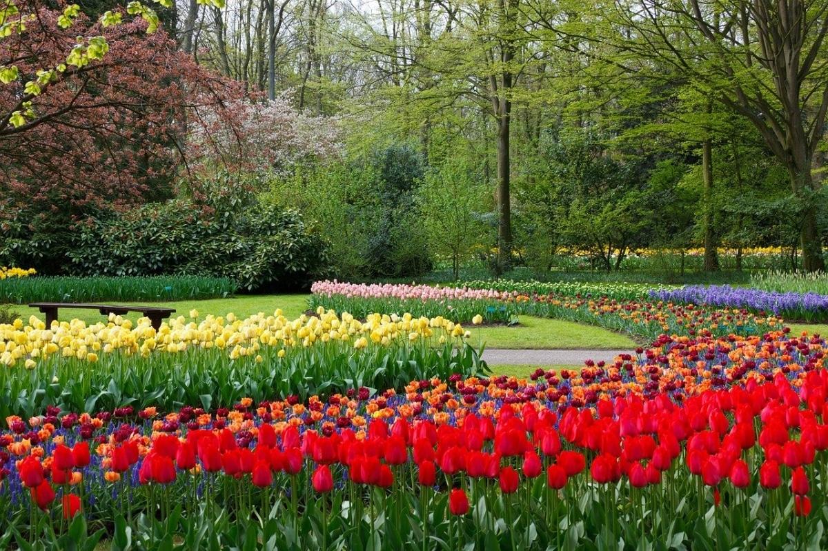 En el mundo hay muchos jardines bonitos