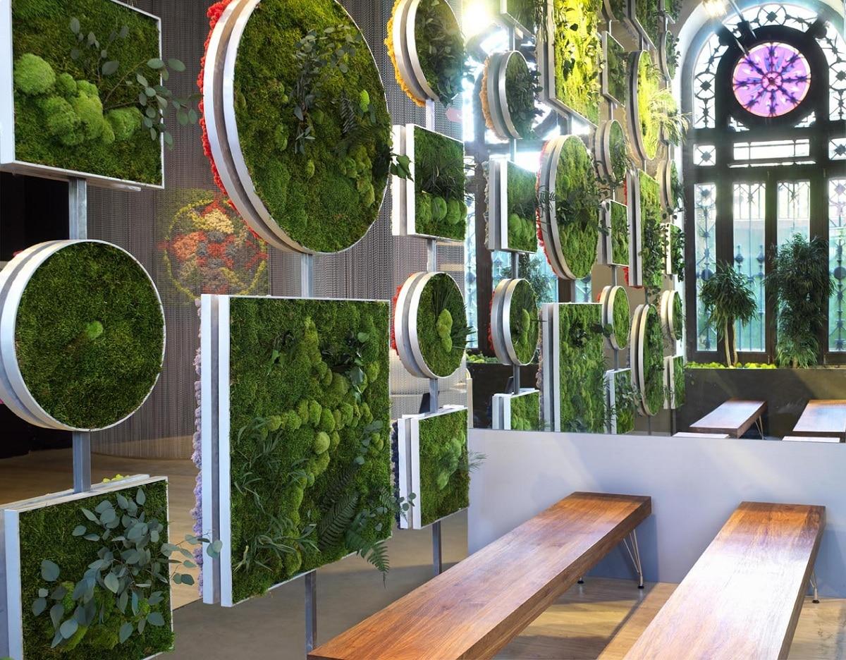 jardin vertical artificial en el hogar
