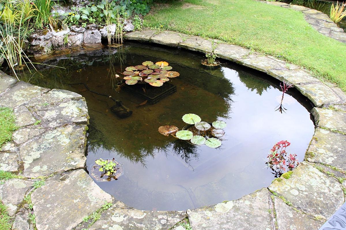 Existen estanques prefabricados con diseños curvos o rectangulares