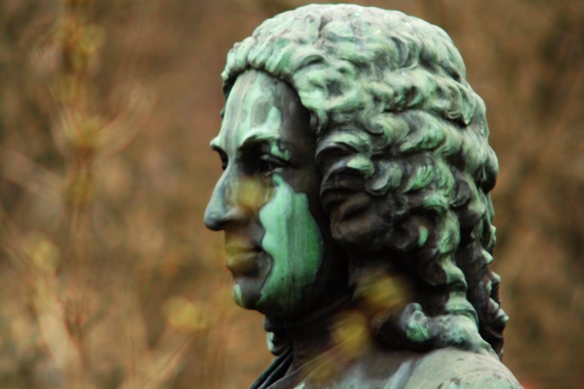 Carlos Linneo hizo la carrera de medicina