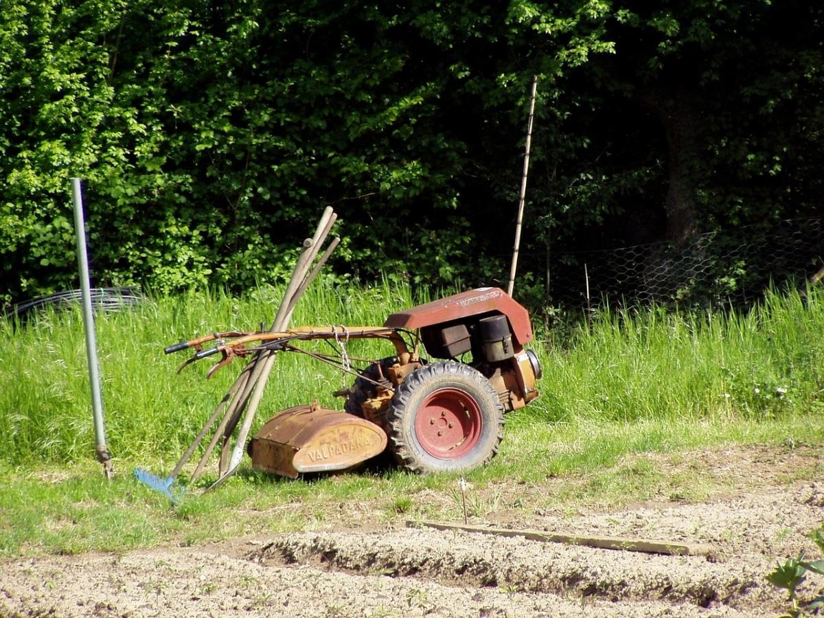 Prepara el terreno antes de plantar tu jardín aromático