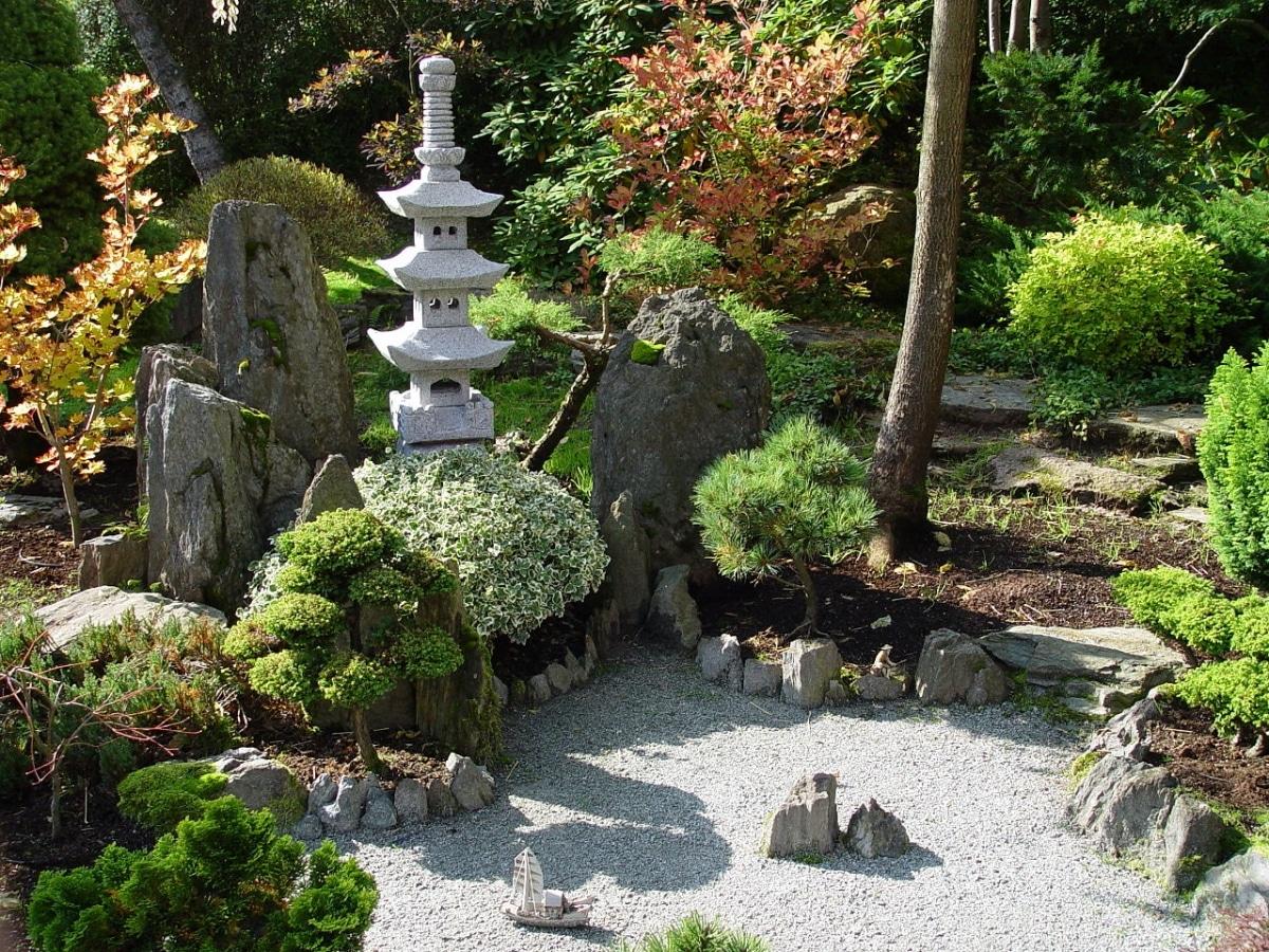 Pon las plantas adecuadas en tu jardín japonés