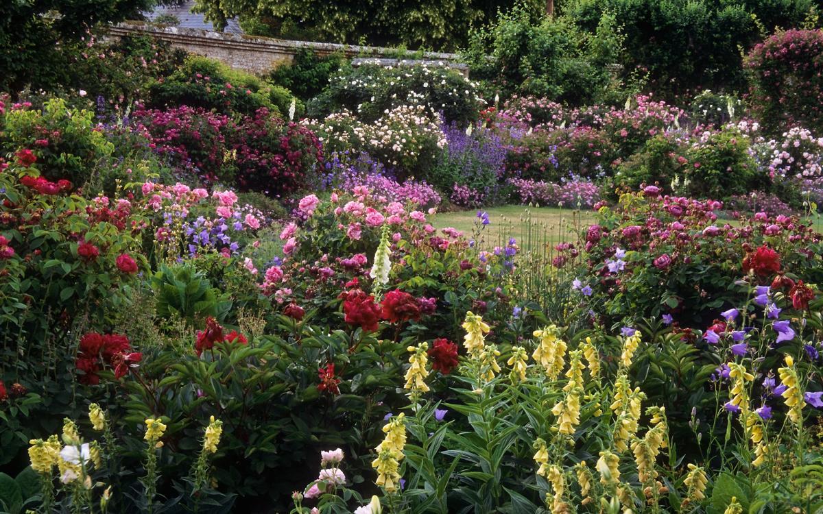 Crea un macizo de flores en tu jardín romántico