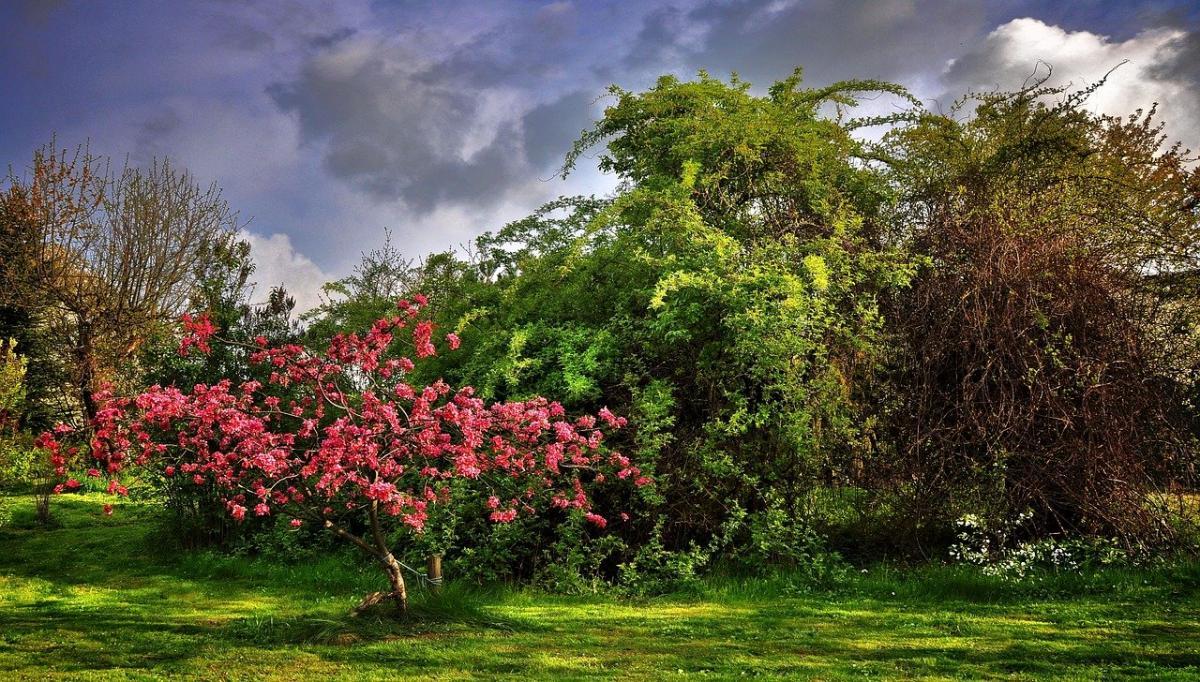En un jardín romántico es crucial que haya un espacio íntimo