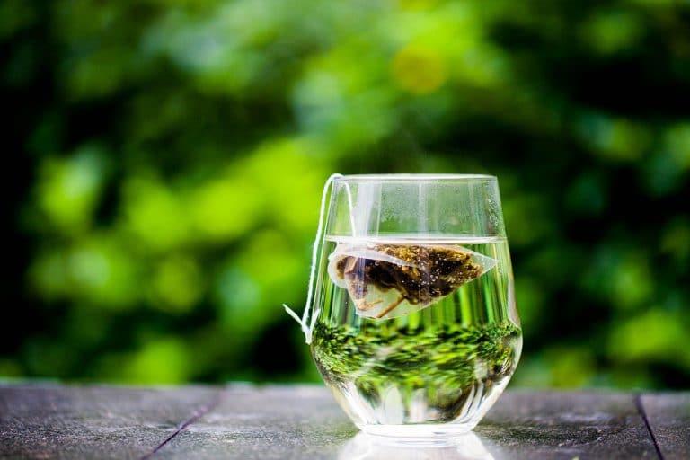 El té verde es rico en catequinas