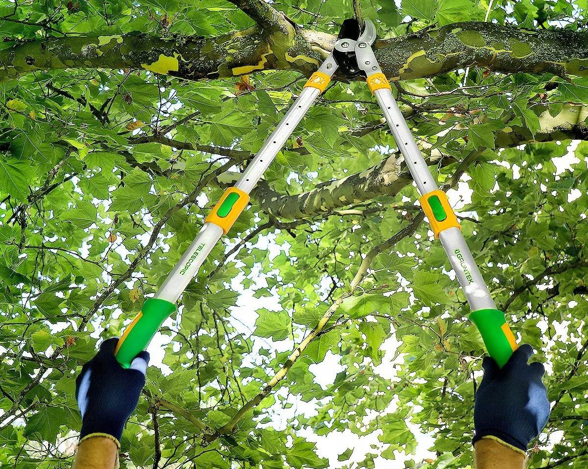 Los cortarramas telescópicos sirven para cortar ramas altas desde el suelo