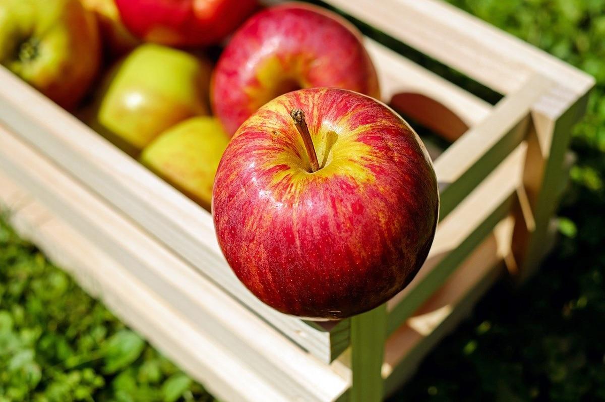 Las frutas y verduras siguen produciendo etileno después de su recolecta