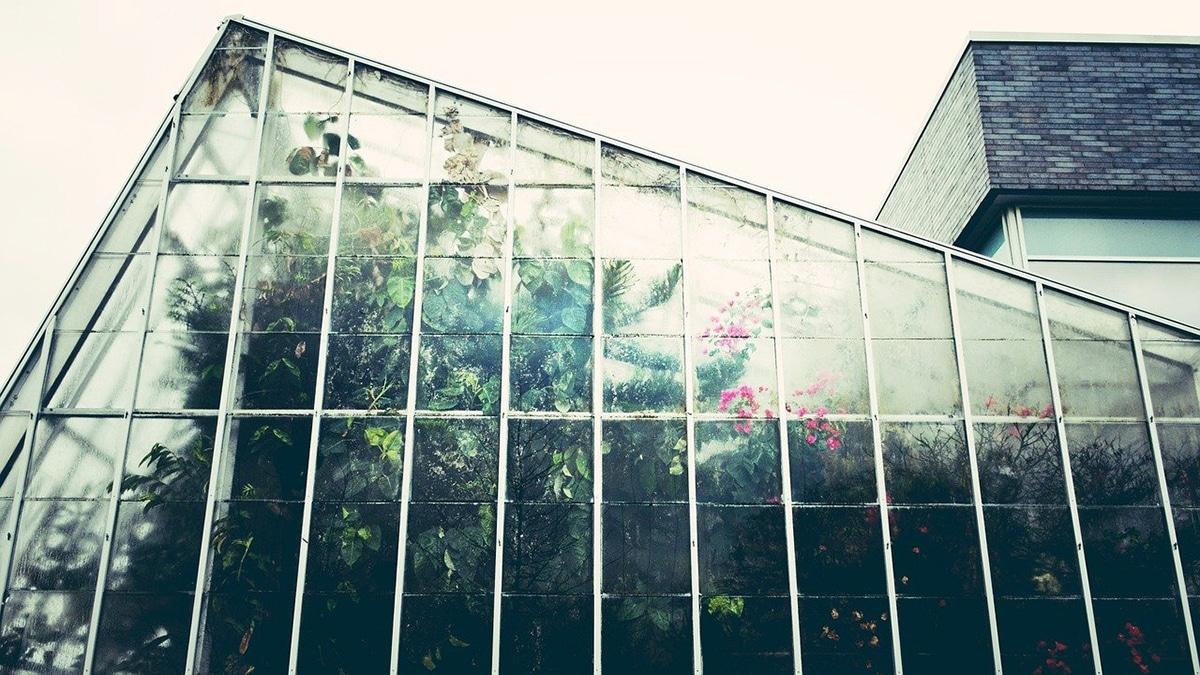 Los jardines botánico son herbarios