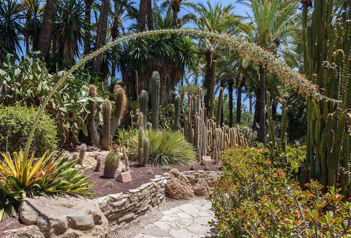 Los jardines o huertos son lugares para cultivar