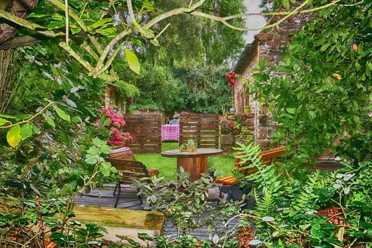 El jardín es un lugar donde se cultivan plantas