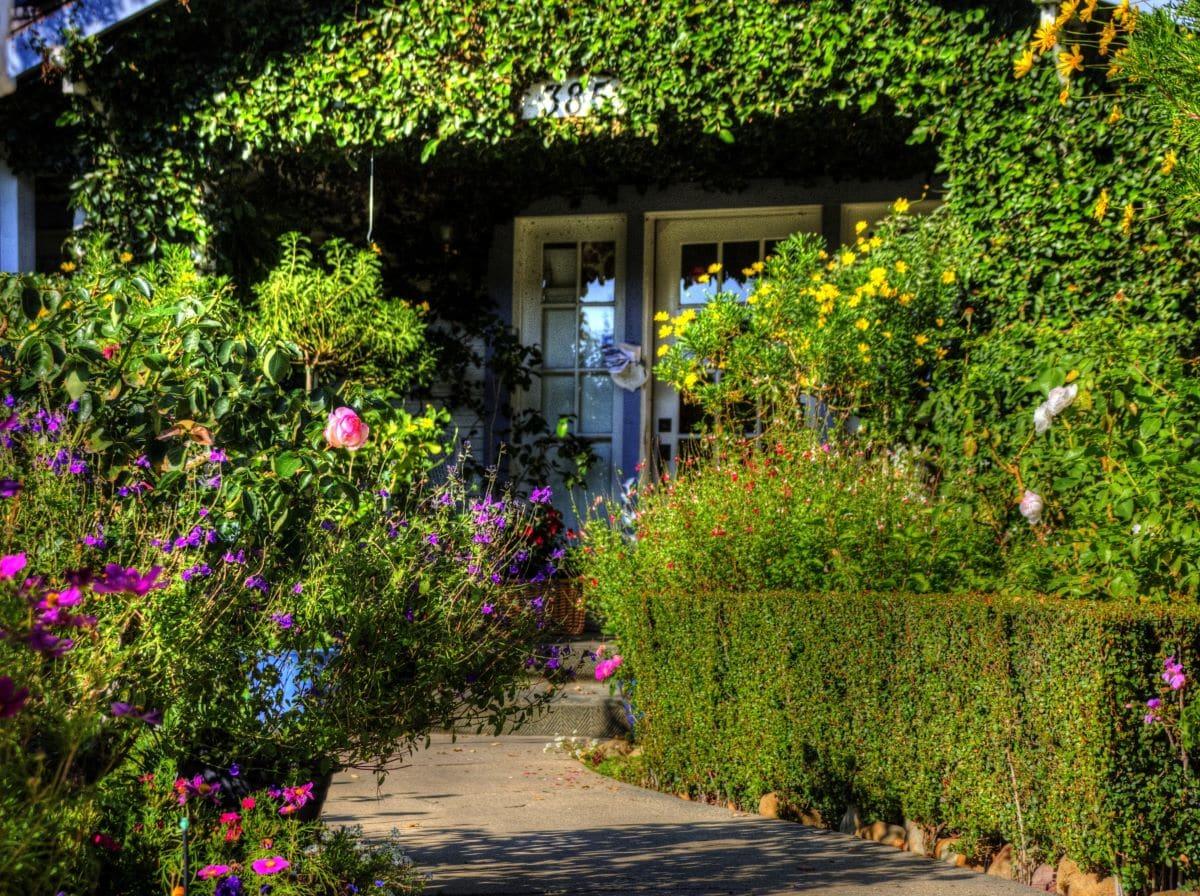 Un jardín es un lugar para desconectar