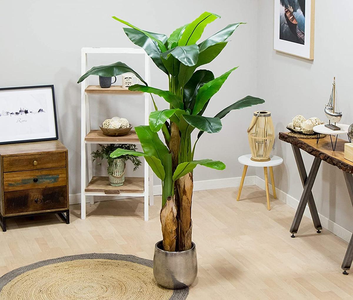 Las plantas artificiales grandes parecen cada vez más reales