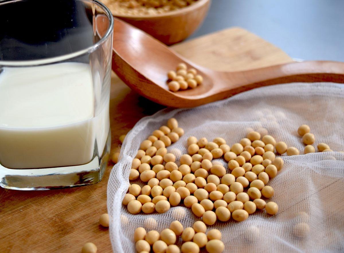 La soja es una legumbre muy nutritiva