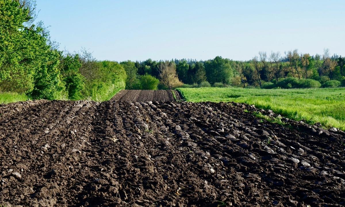 caracteristicas del suelo