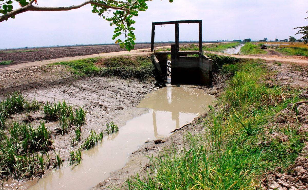 Un suelo puede tener mal o buen drenaje