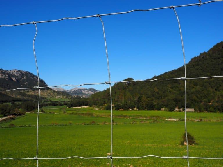 El objetivo del pastor eléctrico es evitar que otros animales entren al terreno