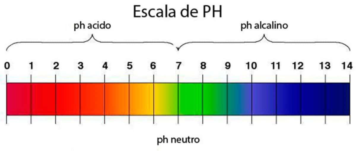 El pH puede ser ácido, neutro o acalino