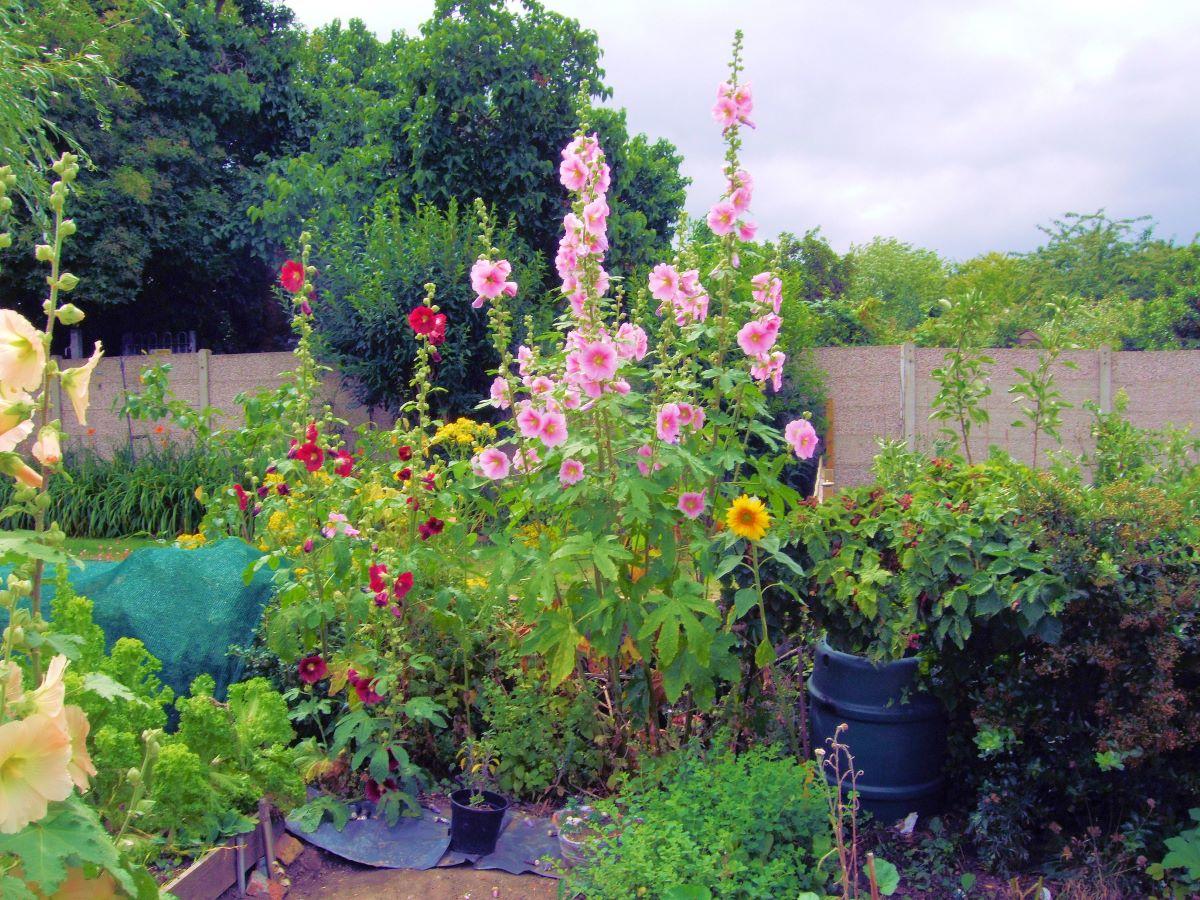 En un jardín urbano no pueden faltar flores
