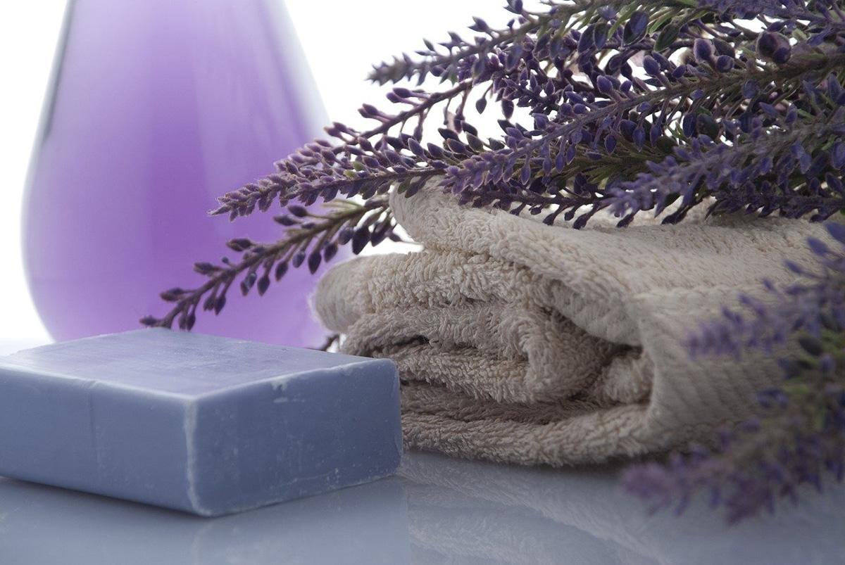 La lavanda en maceta desprende un agradable olor en nuestro hogar