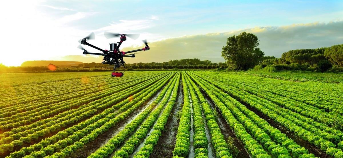 tecnologias para sembrar