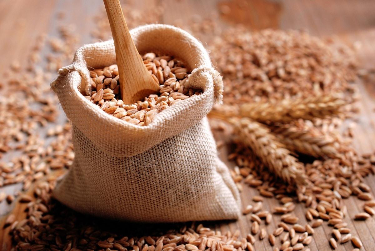 cereales de trigo