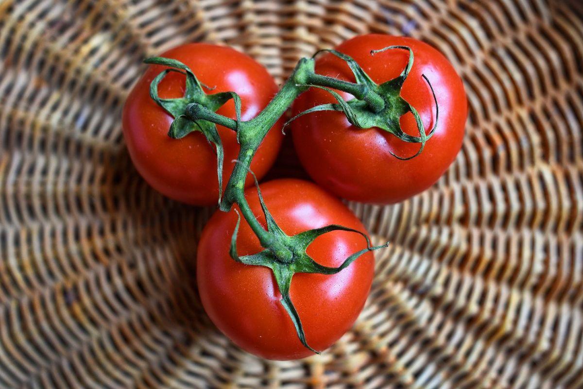 ¿Fruta o verdura? La controversia en la historia del tomate