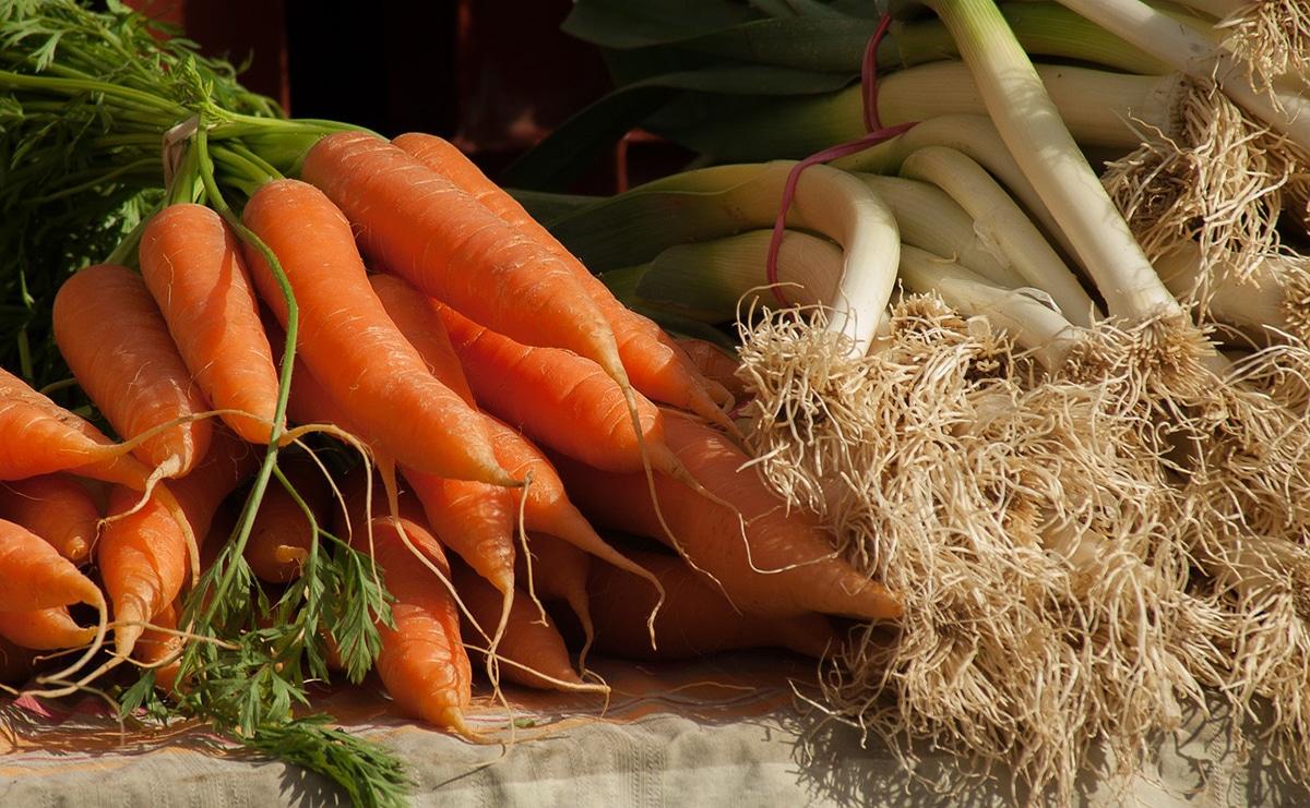 Hay muchos vegetales que se pueden sembrar en julio