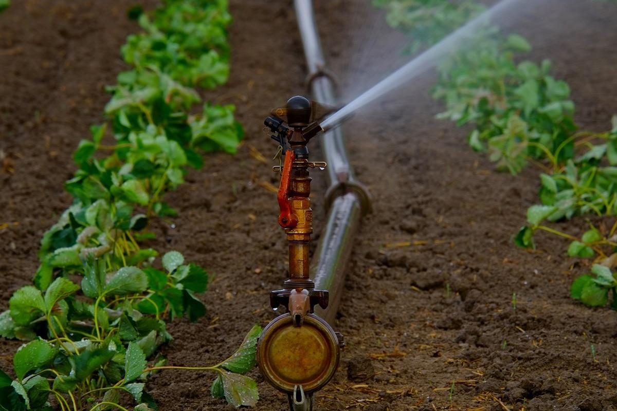 El ácido fosfórico se utiliza mucho en la agricultura