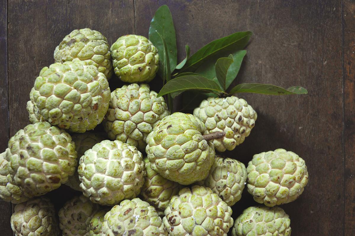 La chirimoya es una fruta con buenas cualidades nutritivas y dietéticas