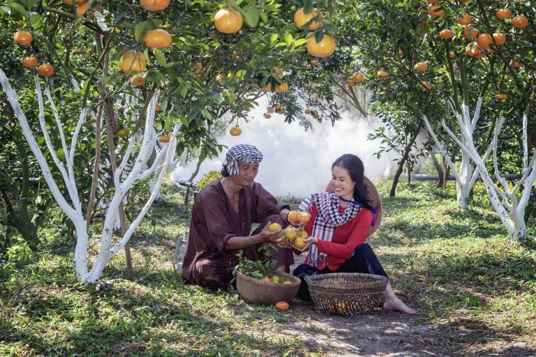 historia de la mandarina