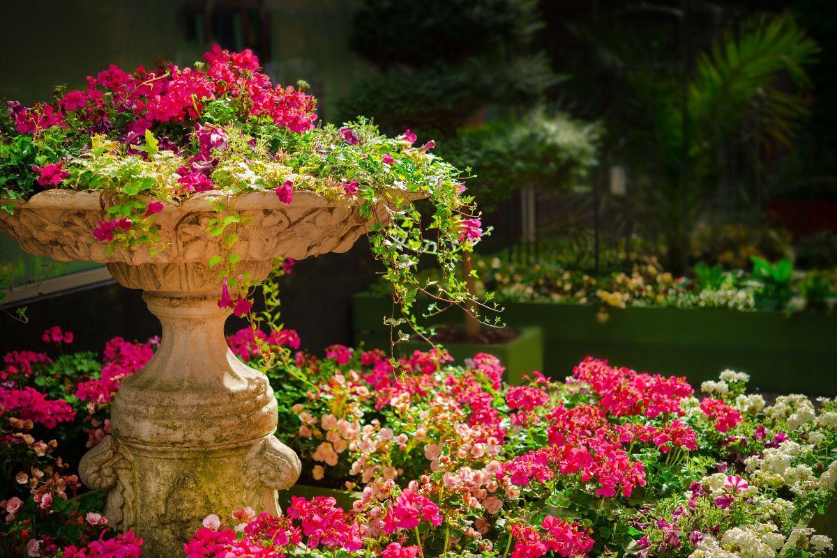 Cómo regar un jardín pequeño