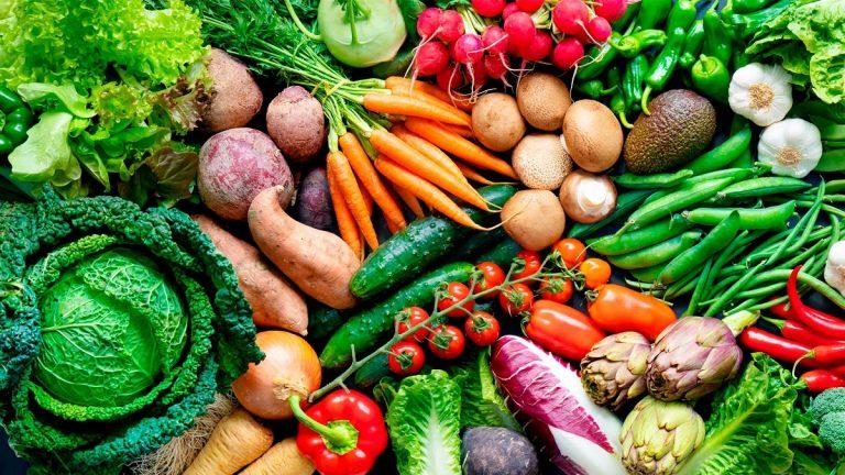 caracteristicas de las hortalizas