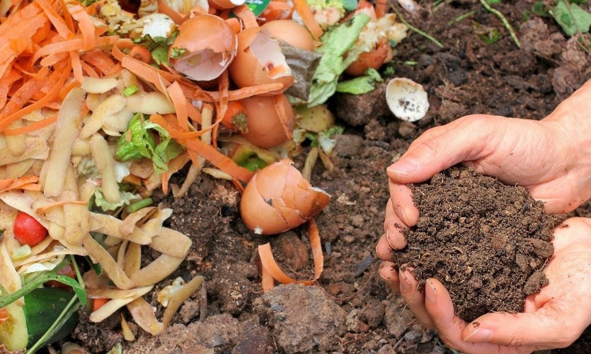 Las hojas secas sirven para el compost